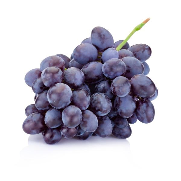 ladele-online-einkaufen-Trauben-blau1